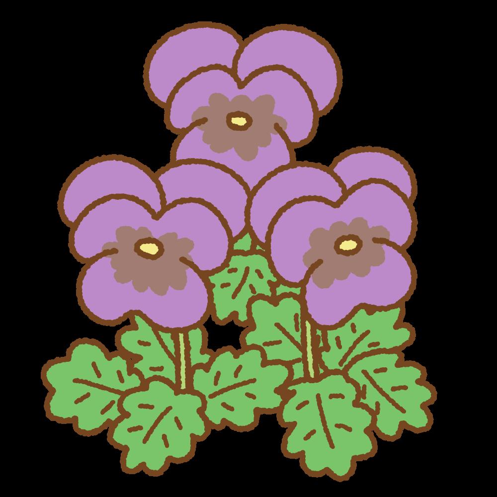 紫のパンジーのフリーイラスト Clip art of purple pansy