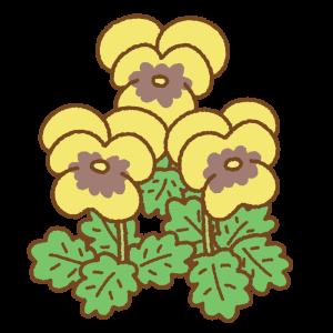 黄色いパンジーのフリーイラスト Clip art of yellow pansy