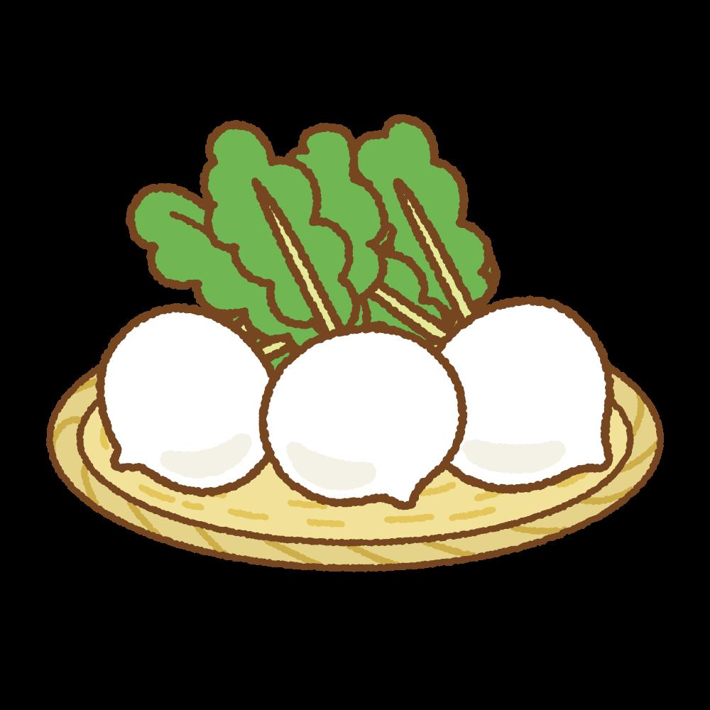 ザルにのせたカブのフリーイラスト Clip art of turnip