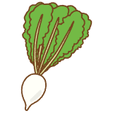 すぐき菜のイラスト