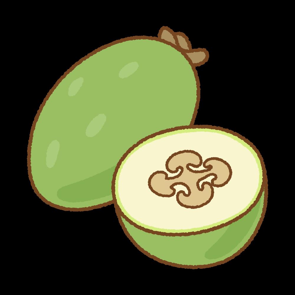 ファイジョアのフリーイラスト Clip art of feijoa