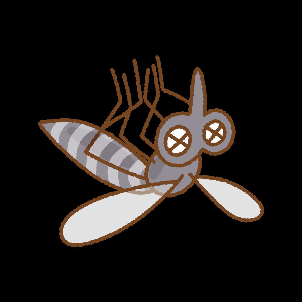 死んだ蚊のフリーイラスト Clip art of mosquito