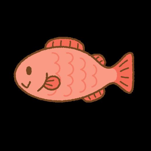 魚のイラスト