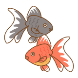 金魚のフリーイラスト Clip art of goldfish