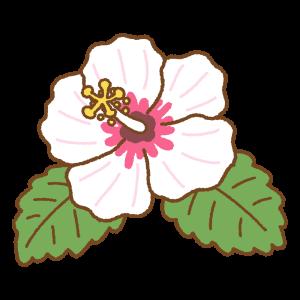 ハイビスカスのフリーイラスト Clip art of hibiscus