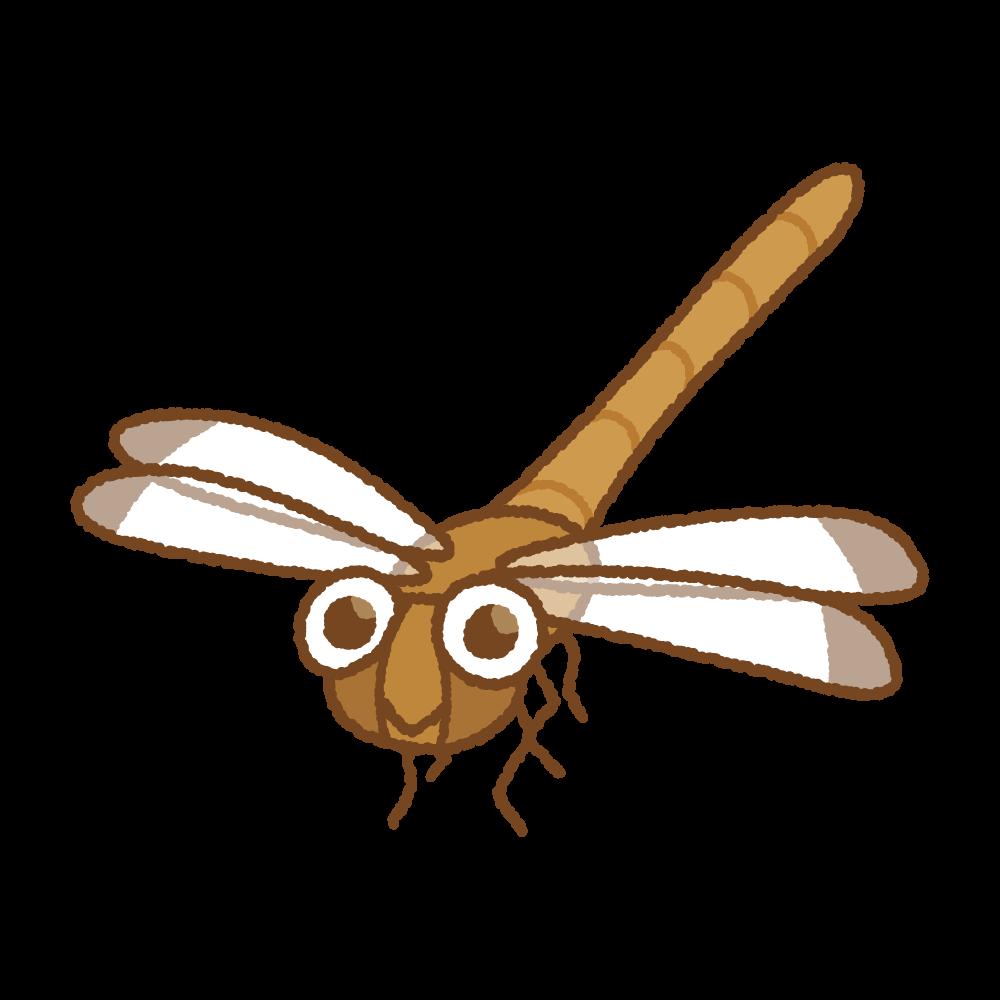 トンボのフリーイラスト Clip art of dragonfly