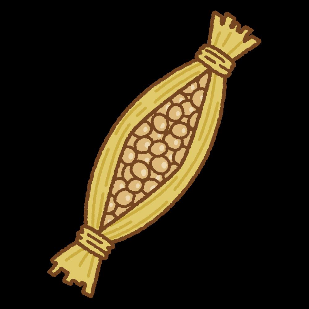 藁に入った納豆のフリーイラスト Clip art of natto