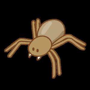クモのフリーイラスト Clip art of spider