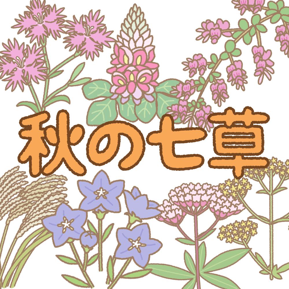 秋の七草のフリーイラスト Clip art of aki-no-nanakusa