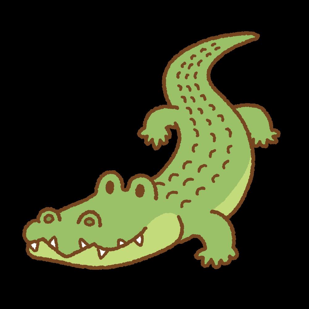 ワニのフリーイラスト Clip art of crocodile