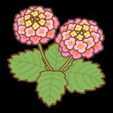 ランタナのフリーイラスト Clip art of lantana