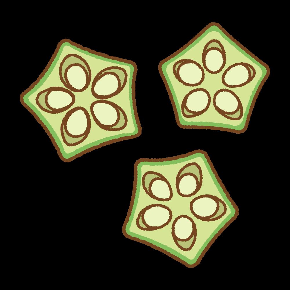 オクラの断面のフリーイラスト Clip art of okra