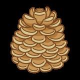 松ぼっくりのフリーイラスト Clip art of pinecone