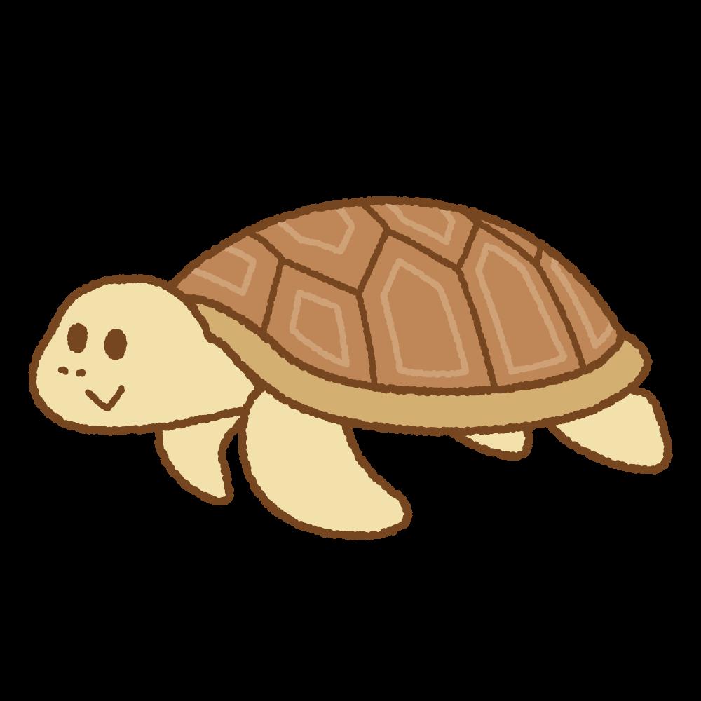 ウミガメのフリーイラスト Clip art of sea-turtle