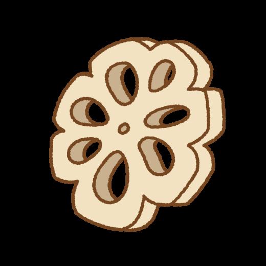 レンコンの飾り切りのイラスト