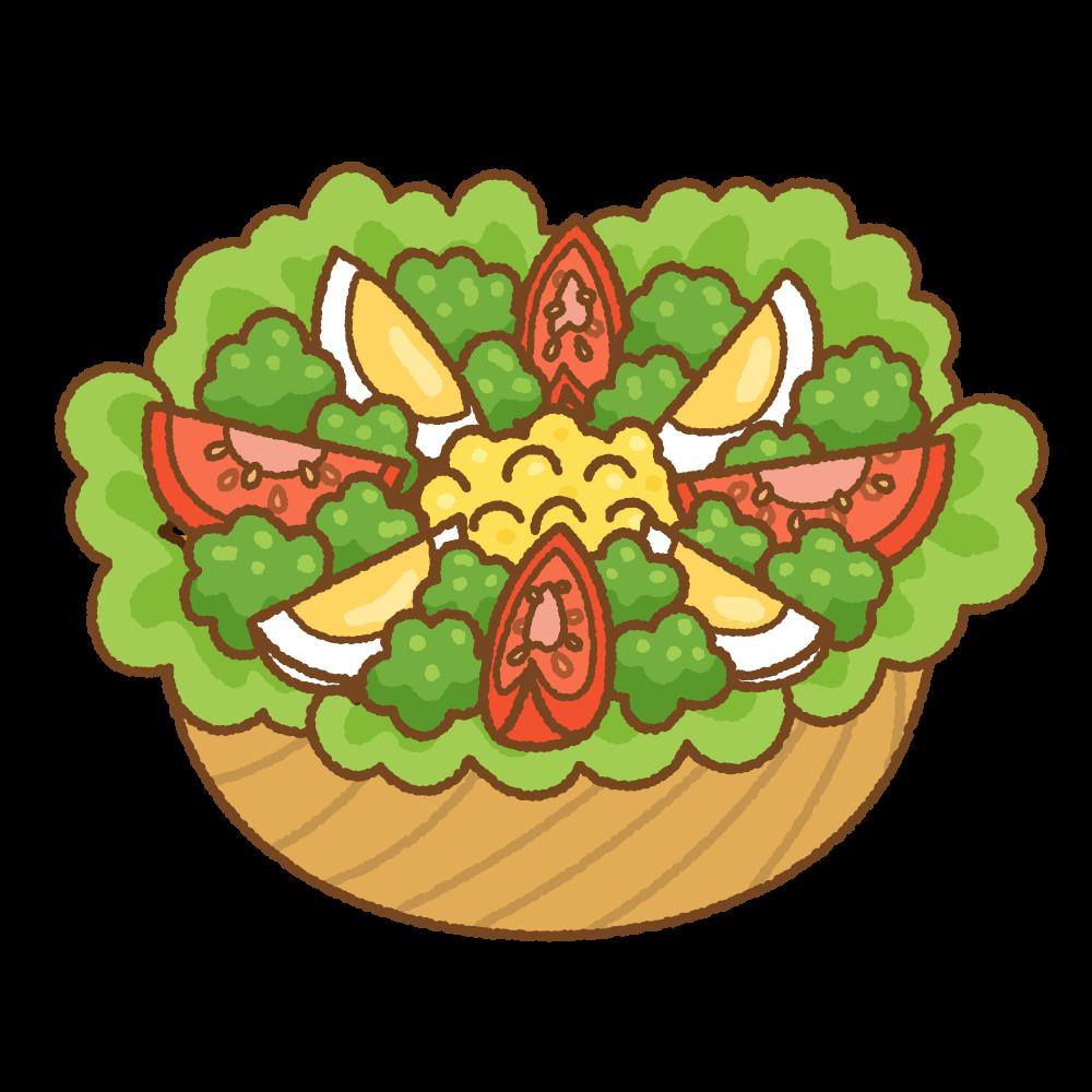 サラダのフリーイラスト Clip art of salad