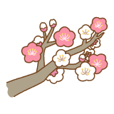 梅の花のフリーイラスト Clip art of japanese-plum-flower