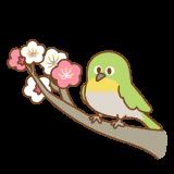 梅にメジロのイラスト