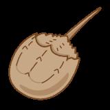 カブトガニのフリーイラスト Clip art of horseshoe crab