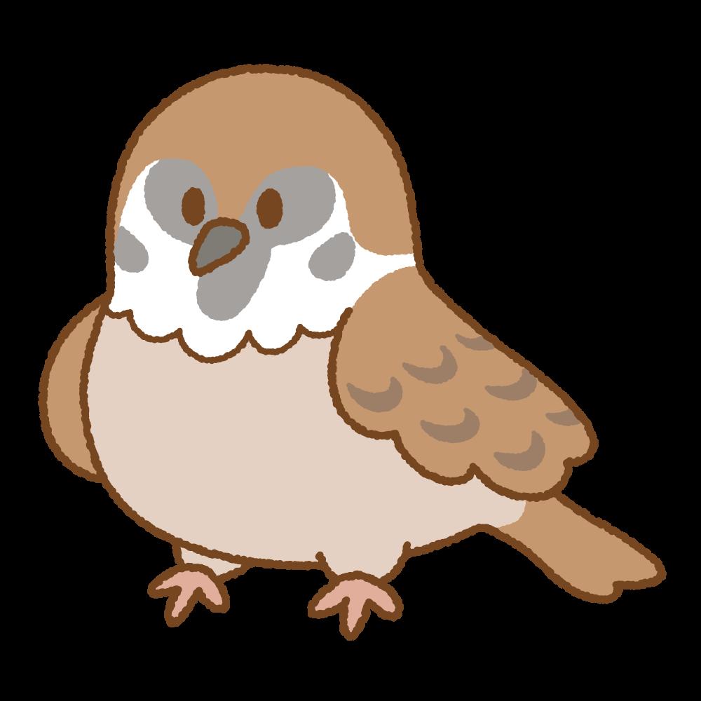スズメのフリーイラスト Clip art of sparrow