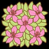 ツツジの花のフリーイラスト Clip art of tsutsuji-flower