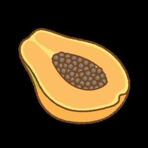 パパイヤのフリーイラスト Clip art of papaya