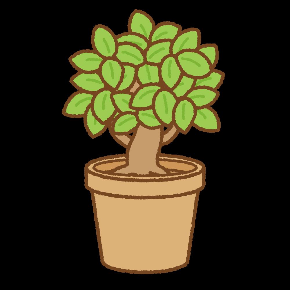 鉢植えのフリーイラスト Clip art of potted-plant