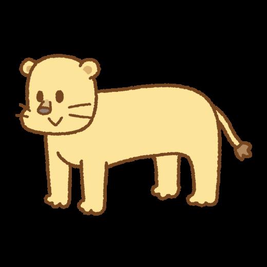 ライオンのイラスト