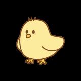 ヒヨコのフリーイラスト Clip art of chick