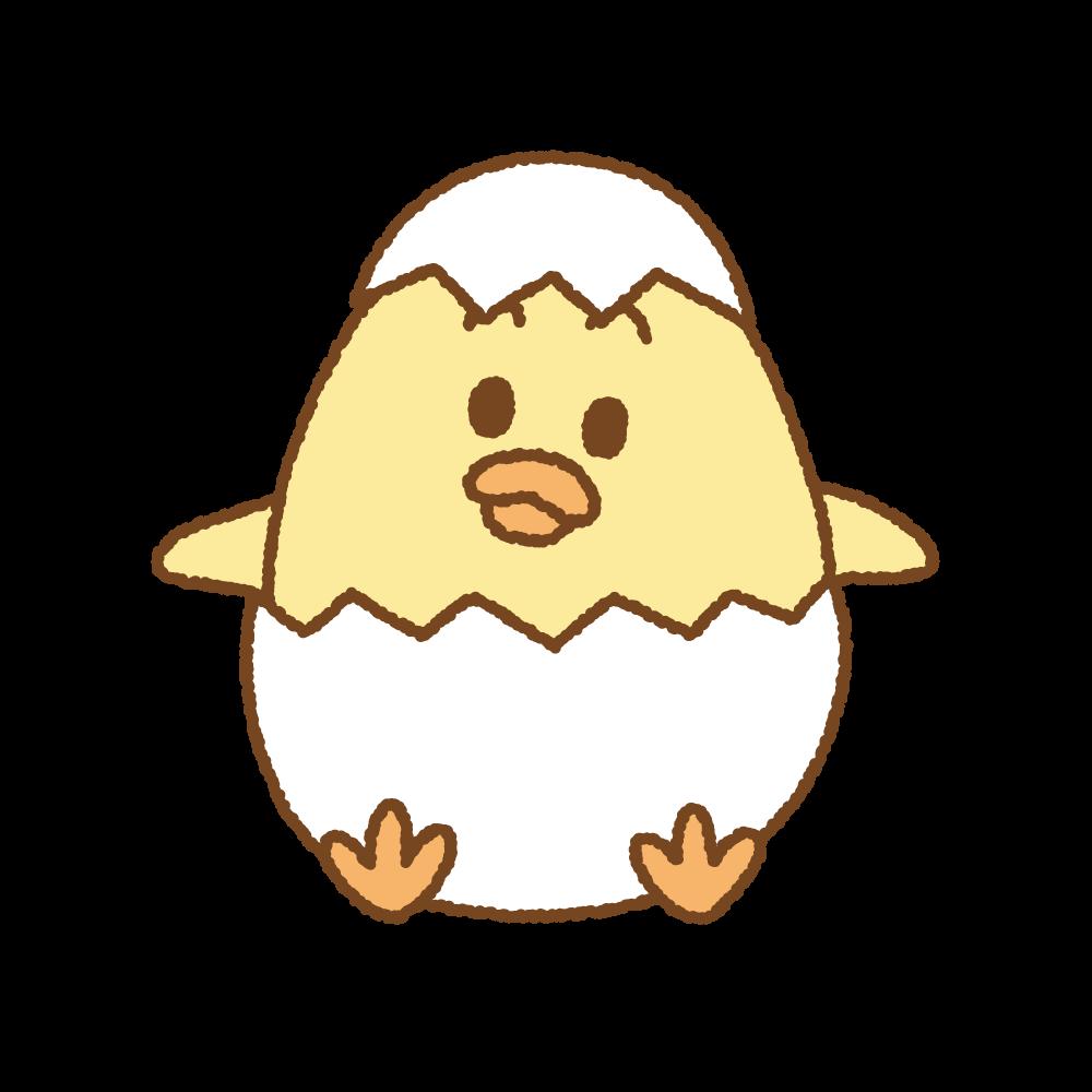 ヒヨコのフリーイラスト Clip art of chick-egg