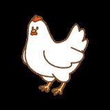 ニワトリのフリーイラスト Clip art of chicken