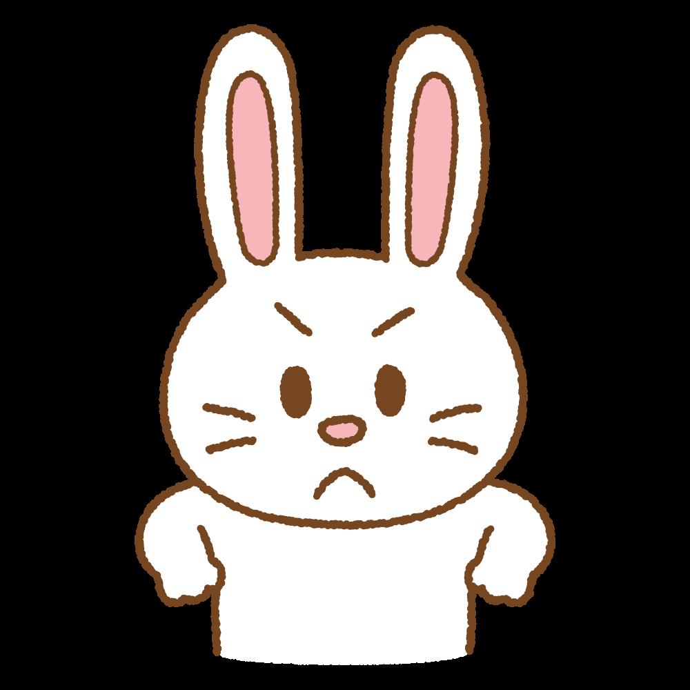 怒るウサギのフリーイラスト Clip art of rabbit-angry