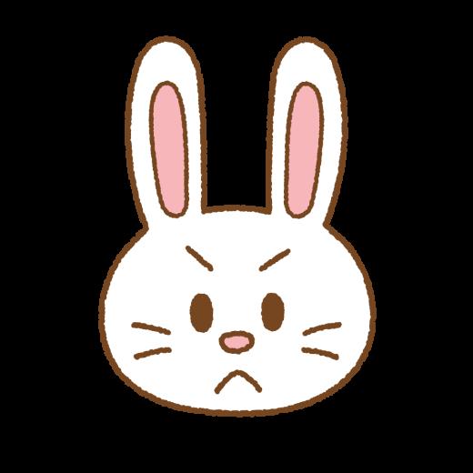 怒るウサギの顔のイラスト
