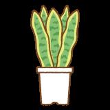サンセベリアのフリーイラスト Clip art of snake-plant