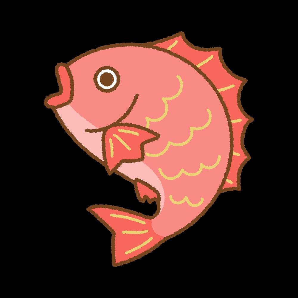 鯛のフリーイラスト Clip art of tai