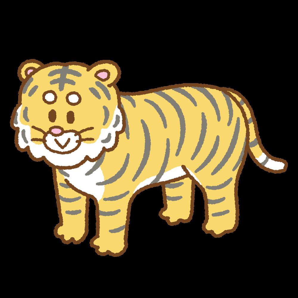 トラのフリーイラスト Clip art of tiger