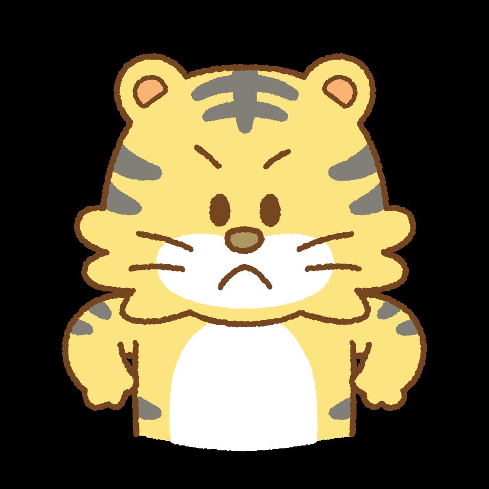 怒るトラのフリーイラスト Clip art of tiger-angry